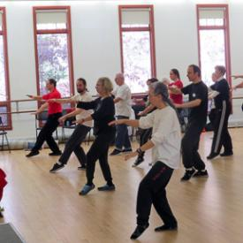 "Shifu Diane Hoxmeier Rabinowitz leads a ""Tai Chi Tune Up"" Workshop"